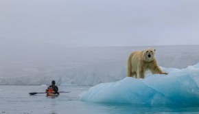 Paddling The Cold Edge kayak sea expedition