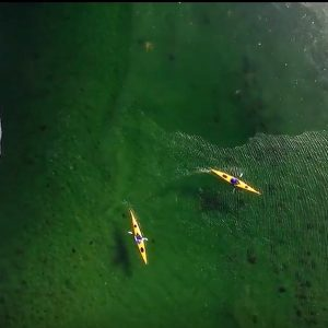 Arctic Kayaking Paddle World
