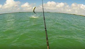 kayak fishing key west Paddle World