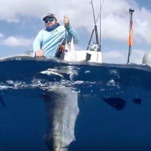 Sailfish catch Paddle World