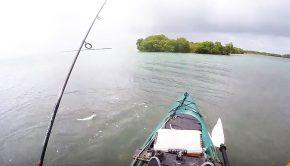key west kayak fishing paddle World