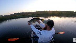 big bass kayak fishing paddle World