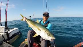 Kayak Fishing for BIG Yellowtail | #FieldTrips Ep 2