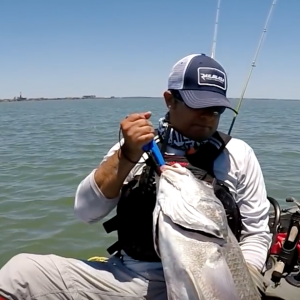 Giant Black Drum Downtown Corpus Christi, TX - Kayak Fishing TV