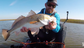 Sightcasting to Big Redfish in Louisiana | #FieldTrips