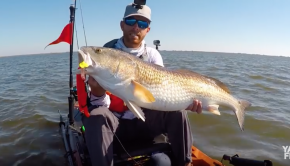 Kayak Fishing: BIG Bull Redfish on a Tough Day | #FieldTrips