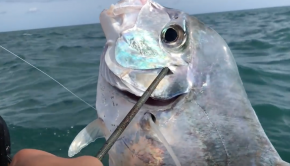 Panama Kayak fishing - The Panga Trip