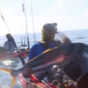 Kayak Fishing: HUGE Roosterfish Puts up a Crazy Fight | Field Trips Panama