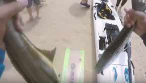 Noosa Offshore Kayak Fishing Tournament 2018