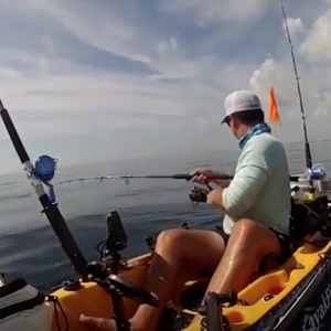 While out fishing on the open water on his kayak, this fisherman encountered a hungry bull shark who continuously went at his big catch and tore it to pieces.