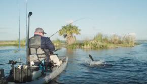 Shallow Water Bass Fishing   Pre-Spawn Tactics   Soft Body Swimbaits
