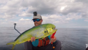 Kayak Fishing for Sailfish & Mahi Mahi Offshore | Field Trips Florida