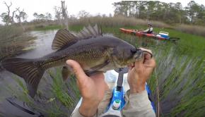 Flooded Wetlands Surface Bass Session 2017 on Dragon Kayak