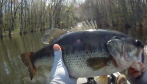 Kayak Fishing -Finally Beat My PB! -My Biggest Bass Yet