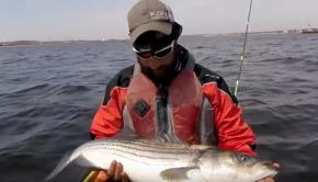 THE BIG STRIPED BASS SHOWDOWN!!!!! Elias VF Fishing