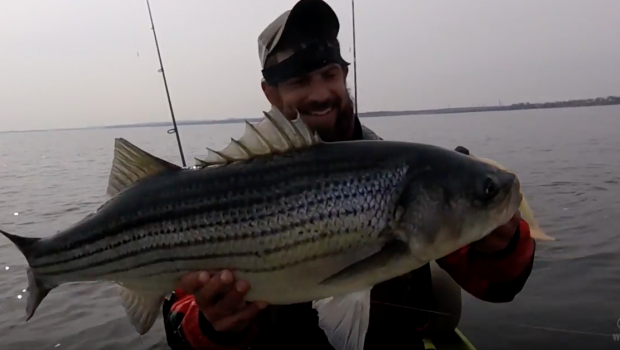 Jigging Hungry Pre-Spawn Striped Bass (No Trolling!)