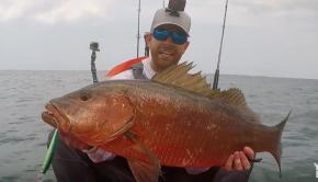INSANE Cubera Snapper Fishing from Kayaks   Field Trips Panama