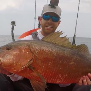 INSANE Cubera Snapper Fishing from Kayaks | Field Trips Panama