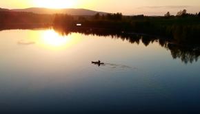 Beautiful Sunset Kayaking!