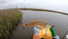 Marsh fishing for redfish on the kayak