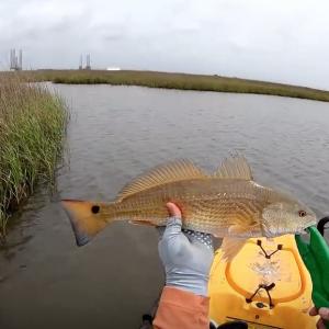 Marsh fishing for redfish on the kayak