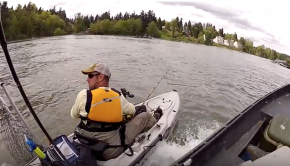 Kayak Fisherman hit by Boat