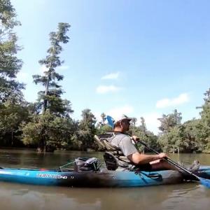 SparkleBerry Swamp Summer Kayaking