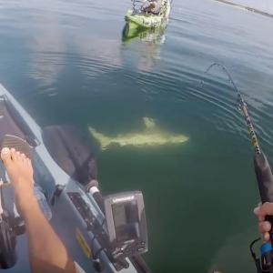 2018 Funniest kayak fishing FAILS !