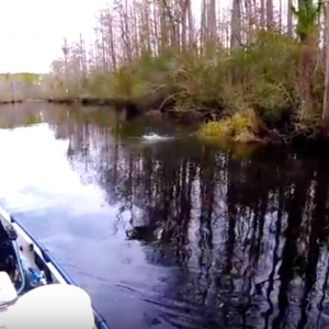 WELL THAT'S A FIRST ! | Kayak fishing Pensacola