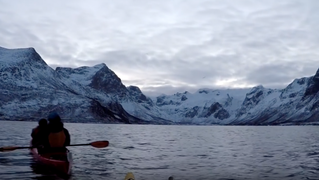KEKE boss kayaking with whales
