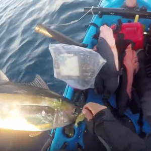 An Evening Offshore - Florida Keys Vertical Jigging and Trolling