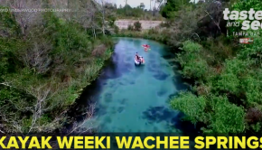 Weeki Wachee Springs: Kayaking Crystal-Clear Blue Water | Taste and See Tampa Bay