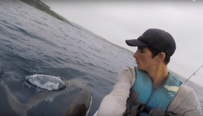 Catching Dorado on a kayak