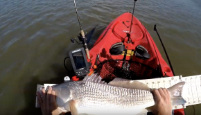 Hunting BIGGER FISH (REDFISH) Kayak Fishing Beaufort SC