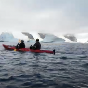 Kayaking and Whales in Antarctica: Booth Island