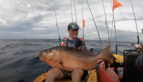 WORLD RECORD Cubera Snapper | Kayak Fishing Panama