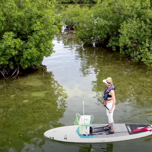 Ever tried lobstering from your SUP board? Brie from BA Fishing takes us through her experience and this unique practice!